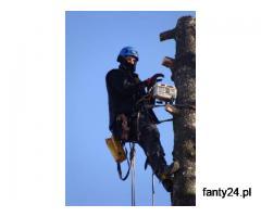 Ścinka drzew, ścinka sekcyjna prace alpinistyczne